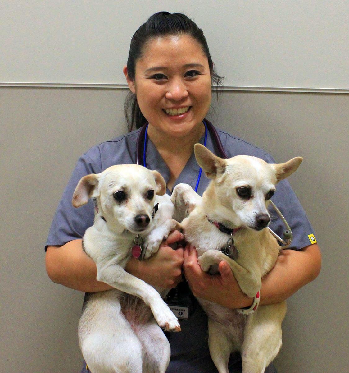 sophia mallon dvm conejo valley veterinary hospital