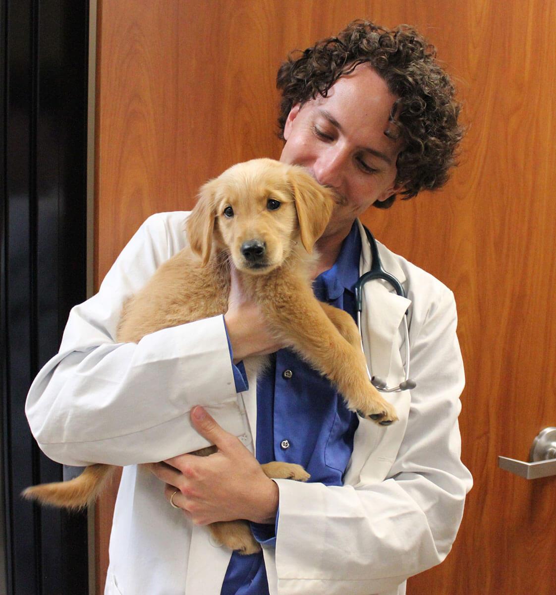 jason sweitzer dvm conejo valley veterinary hospital